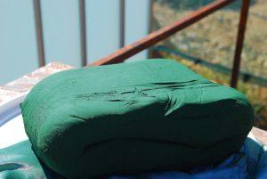 spiruline cévennes algues